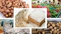 Dự báo kim ngạch xuất khẩu quý I giảm