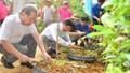 """Dấu ấn """"Ngày Chủ nhật xanh"""" ở Thừa Thiên - Huế"""
