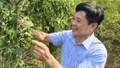 Để đất nước có một lớp nông dân đổi mới