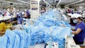 Bộ Công Thương hỗ trợ doanh nghiệp xuất khẩu vật tư y tế