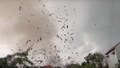 Clip lốc xoáy khiến 3 người tử vong ở Vĩnh Phúc