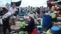 Nhộn nhịp chợ cá Bến Do
