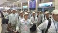 Lao động Việt Nam đi làm việc ở nước ngoài: Thêm nhiều quyền lợi và chế độ