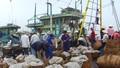 """Quyết tâm gỡ """"thẻ vàng"""" về khai thác hải sản"""