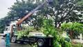 Ngày mai học sinh Đà Nẵng, Quảng Nam nghỉ học phòng tránh bão