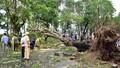 Thừa Thiên - Huế: Tổng lực khắc phục thiệt hại mưa bão