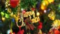 Những câu chuyện nhuốm màu huyền bí về cây thông Noel