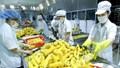 """Nông nghiệp Việt năm 2020 xuất khẩu """"ngoạn mục"""""""