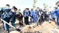 Phấn đấu mỗi người dân Thủ đô trồng một cây xanh