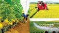 Cơ cấu lại ngành nông nghiệp giai đoạn 2021 - 2025