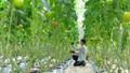 Lâm Đồng đẩy mạnh xây dựng ngành nông nghiệp thông minh