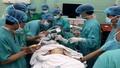 Bệnh nhi 7 tháng tuổi bị hóc hạt dưa ở phế quản