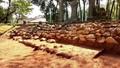 Phát hiện nhiều dấu tích quan trọng tại di tích lăng vua Đồng Khánh