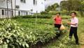 Thành phố Huế: Bước đột phá trong Chỉ thị số 40-CT/TW với tín dụng chính sách