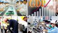 Tiền Giang triển khai kế hoạch thực hiện Tổng điều tra kinh tế năm 2021