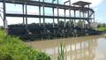 Bổ sung trạm bơm nước thô cho ba địa phương Đồng bằng sông Cửu Long