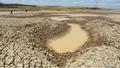 """Nguy cơ hơn 40.000 hecta đất ĐBSCL 'khát nước"""" nghiêm trọng"""