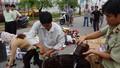 Đà Nẵng: Tiêu hủy số lượng lớn hàng lậu trị giá gần 2 tỷ đồng