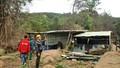 Rừng trên bán đảo Sơn Trà đang bị phá tan hoang