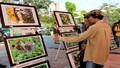 Triển lãm biểu tượng bảo vệ môi trường mới của Đà Nẵng