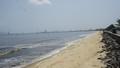 Phát hiện vệt nước màu đen có mùi hôi ở biển Đà Nẵng