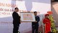 Thành Điện Hải Đà Nẵng được công nhận Di tích quốc gia đặc biệt