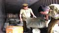 Phát hiện container chở gần 7 tấn thịt thối từ Hà Nội vào TP HCM tiêu thụ