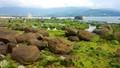 Ngỡ ngàng vẻ đẹp rêu xanh tại rạn Nam Ô