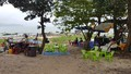 Chấn chỉnh việc lều quán mọc trái phép ở biển Nam Ô