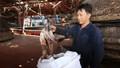 Quảng Nam 'cầu cứu' khi Trung Quốc thay đổi phương thức nhập khẩu mực khô