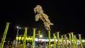 Dịp 2/9, Đà Nẵng tưng bừng lễ hội Lân sư rồng quốc tế, quy tụ hàng loạt sao lớn