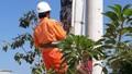 PC Quảng Ngãi sớm hoàn thành kế hoạch kiểm tra giám sát mua bán điện năm 2020