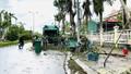 Xuyên ngày, xuyên đêm trả lại 'đường thông hè thoáng' tại Quảng Ngãi sau bão