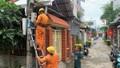 PC Quảng Ngãi: Sẵn sàng phương án đảm bảo cấp điện phục vụ Tết nguyên đán Tân Sửu 2021