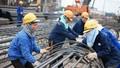 Phải cải cách quan hệ lao động nếu muốn hưởng lợi kinh tế từ TPP
