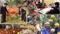 Chính phủ và Mặt trận Tổ quốc phối hợp giảm nghèo bền vững