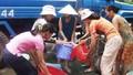 TP Hồ Chí Minh: 100% người dân được cấp nước sạch