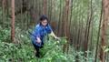 Cần xác định đúng mức việc quản lý rừng sản xuất