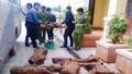 Quảng Bình:  Tập trung xử lý dứt điểm tình trạng  khai thác trái phép cây hương giáng