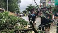 Quân đội huy động hàng trăm nghìn người cứu nạn sau bão số 2