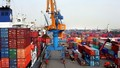 Xuất khẩu đạt hơn 115 tỷ USD trong 7 tháng đầu năm