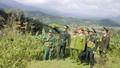 Bộ đội Biên phòng chung tay xóa nghèo cho đồng bào vùng biên giới A Lưới