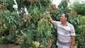Ông 'Hai Lúa' miền Tây 'lặn lội' sáng tạo thoát nghèo thành tỷ phú