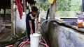 """Quảng Trị:  Khu tái định cư """"lao đao"""" vì khan hiếm nước sạch"""