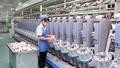 Hà Tĩnh thành lập mới được hơn 2.400 doanh nghiệp