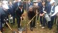 Chủ nhiệm UBKT Trung ương dự Lễ phát động trồng cây tại Bắc Ninh