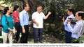 Lễ cúng Miếu Bà nơi quê hương thuở ấu thơ của LS Nguyễn Hữu Thọ