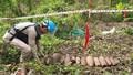 Việt Nam còn khoảng 800.000ha đất bị ô nhiễm bom mìn