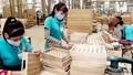 'Gỡ khó' cho xuất khẩu nông - lâm - thủy sản bằng cách nào?