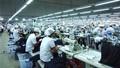 """Sa thải lao động sau tuổi 35: Tuân thủ pháp luật  là lời giải cho """"bài toán"""" chống sa thải"""
